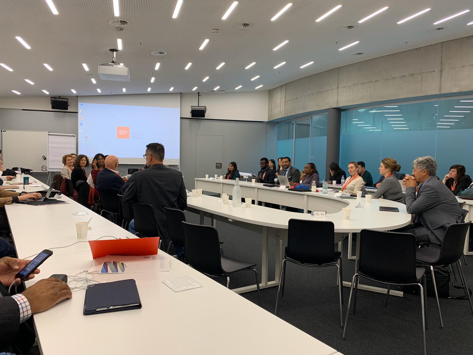 Virtual Meeting of the Global Network on Youth Transitions: COVID-19 and Youth Transitions
